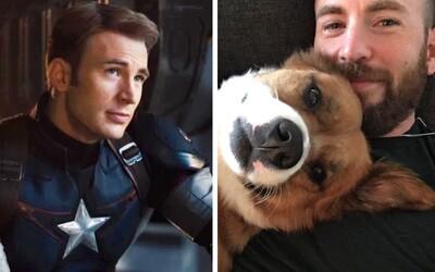 Captain America Chris Evans nechtěně zveřejnil fotku svého penisu. Celý internet se mu snaží pomoci, aby se již dále nešířila