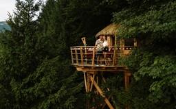 Čarovné domčeky na stromoch, v ktorých si môžeš užiť rozprávkový oddych aj ty