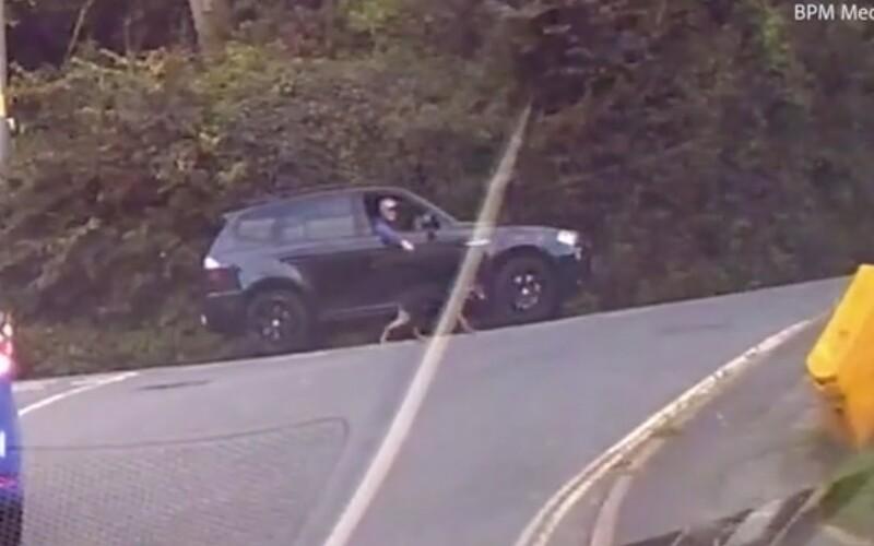 VIDEO: Muž venčil svojho psa počas šoférovania. Vôdzku držal cez otvorené okno.