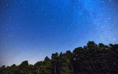 """Čeká nás nebeské divadlo Perseidy, na obloze uvidíme desítky """"padajících hvězd"""""""