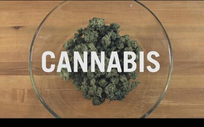 Celosvetovo prvá kniha o varení s marihuanou