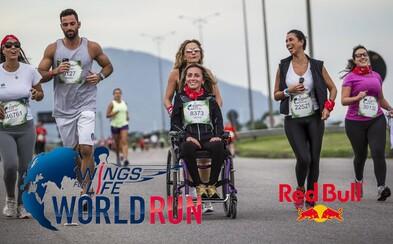 Celý svet je už pripravený bežať, až 42 národností na Slovensku!
