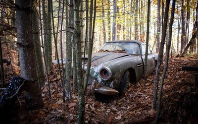 Celých 40 let stál opuštěný v lese, ale i tak se bude prodávat za 11 milionů korun. Vzácný Aston Martin DB4 zaujal mnoho sběratelů