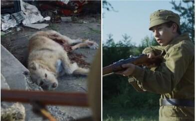 Černobyľské psy čakali na majiteľov a strážili svoje domovy. Lovcov so zbraňami uvítali s radosťou