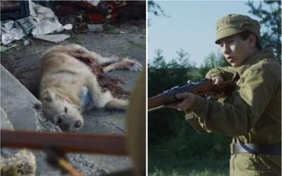 Černobylští psi čekali na majitele a střežili své domovy. Lovce se zbraněmi uvítali s radostí