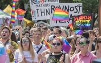 Češi a Slováci jsou k homosexuálům mnohem méně tolerantní než před 12 lety