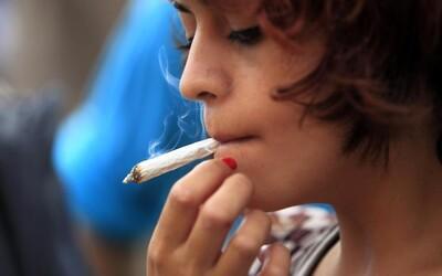 Češi stále vedou v kouření marihuany. Zkušenosti s ní má téměř 40 procent mladých ve věku 15 a 16 let