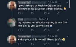 Češka na Twitteri rasisticky ponižovala 15-ročného chlapca, zamestnávateľ ju prepustil