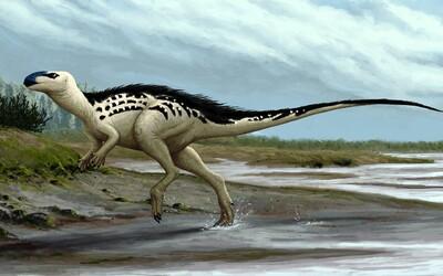 Česká republika má svého prvního dinosaura, který údajně nežil nikde jinde na světě