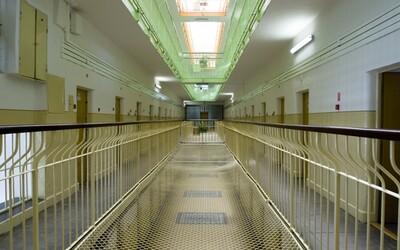 Česká vrahyňa odsúdená na 30 rokov otehotnela vo väznici, sudca ju prepustil na slobodu