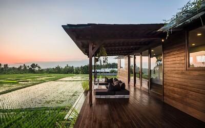 Český pár si postavil dům z kontejnerů uprostřed rýžových polí na ostrově Bali