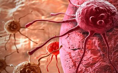 Čeští vědci sráží rakovinu na kolena. Vyvinuli látku, která karcinogenní buňky dokáže zničit