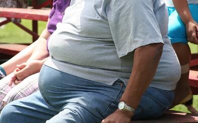 Čeští vědci vytvořili hormon, který dokáže vyléčit obezitu. Jejich výsledky už zaujaly světové farmaceutické firmy