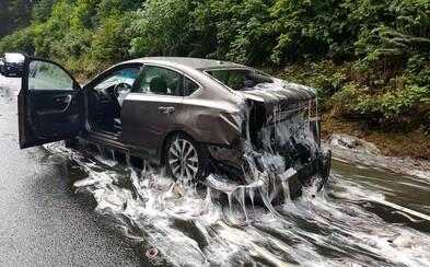 Cestu aj autá pokryli úhory a sliz. Scénu ako zo sci-fi filmu spôsobilo prevrátenie nákladného auta prevážajúceho slizké živočíchy