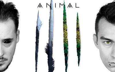 Chalani z Nerieš predstavujú cover k albumu Animal. Majú hotových zopár klipov a sú pripravení ovládnuť rok 2018