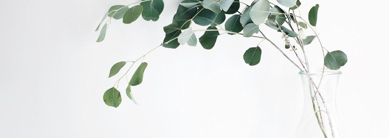 Chceš chránit naši Zemi, ale nevíš jak? 20 tipů pro redukování odpadu nebo omezení plýtvání tě naučí žít ohleduplněji