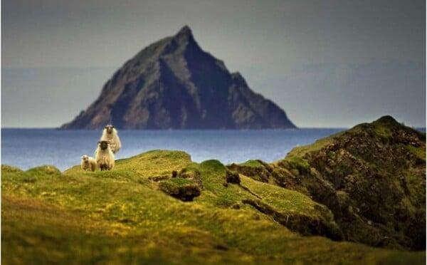 Chceš uniknout před civilizací? Máš jedinečnou možnost jít žít na opuštěný irský ostrov
