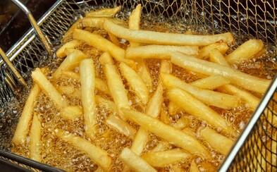 Chemici z Brna vyřešili problém s použitým fritovacím olejem. O jejich převratnou technologii má zájem i Apple