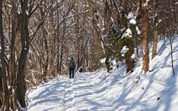 ČHMÚ: Na některých místech Česka napadne až 5 centimetrů sněhu