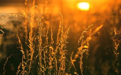 ČHMÚ: Studený konec srpna nahradí teploty mariánského léta. Denní maxima přesáhnou až 28 °C
