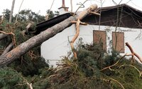 ČHMÚ varuje před silným větrem: Hrozí hlavně v Praze a okolí