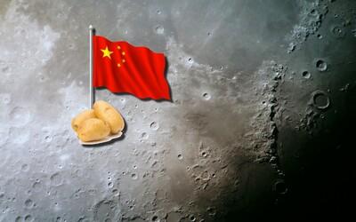 Čína jako první přistane na odvrácené straně Měsíce a zasadí tam brambory