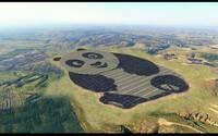 Čína podporuje obnoviteľnú energiu po svojom. Toto je najroztomilejšia solárna farma na svete