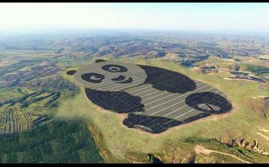 Čína podporuje obnovitelnou energii po svém. Toto je nejroztomilejší solární farma na světě