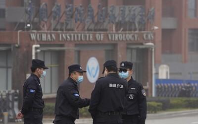 Čína ve velkém nakupovala PCR testy měsíce před prvním oficiálním případem covidu, odhalili analytici kybernetické bezpečnosti