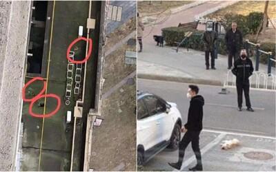 Číňania kvôli koronavírusu vyhadzujú z okien svojich domácich miláčikov. Uverili hoaxu, že zvieratá ho prenášajú