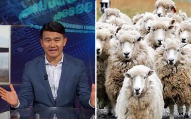 Čínsky komik si vystrelil z úrovne slovenských technológií. Zaoberáme sa vraj ovcami