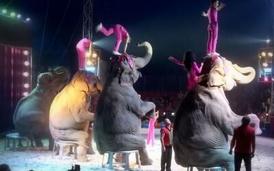 Cirkusy na Slovensku majú vážny problém. Od novembra musia zmeniť celý program, majitelia sú šokovaní