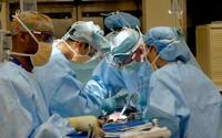 Covid-19 může poškozovat mozek. Týká se to zejména pacientů s mírným průběhem onemocnění, varují vědci