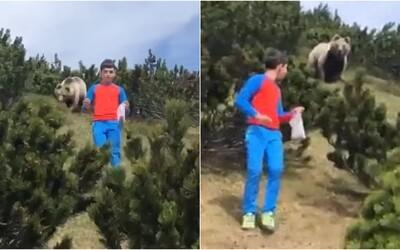 12letého chlapce překvapil v lese medvěd. Unikl mu jen díky tomu, že zůstal klidný a pomalu se vzdálil.