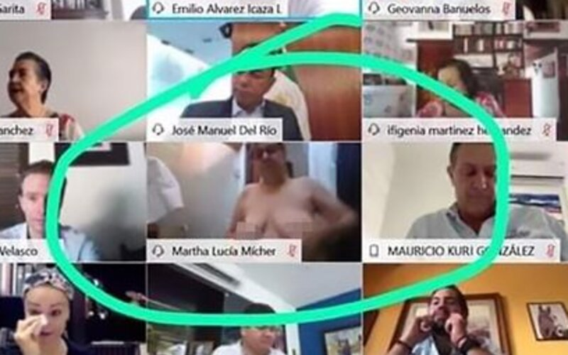 Mexická senátorka si zabudla počas videohovoru vypnúť kameru. Jej kolegovia niekoľko minút sledovali, ako sa sprchuje.
