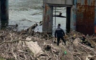 Ďalšia záhadná smrť v bratislavskom prístave. Polícia pri brehu Dunaja objavila telo neznámeho muža