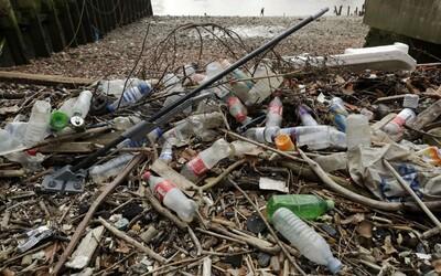 Ďalšie slovenské mesto dalo stopku jednorazovým plastom na verejných podujatiach, chce zabrániť vzniku zbytočného odpadu