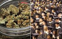 Daň z marihuany bude financovať štipendiá na vysokých školách. Americké Colorado chce zlepšiť vzdelanosť