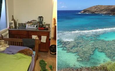 Deň v raji na Havaji? Život na čarovných ostrovoch obsahuje špecifiká, ktoré však prevýši krása