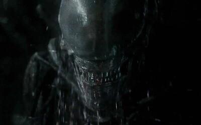 Desivé a krvavé zábery z Alien: Covenant odhaľujú prvé čriepky informácií o tom, čo sa stalo s Davidom a Elizabeth Shaw po Prometheovi