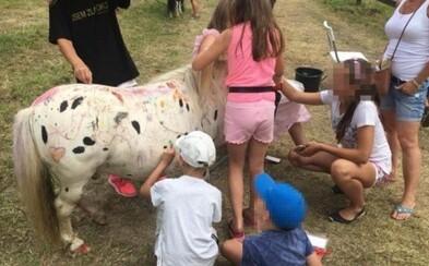 Děti na festivalu čmáraly po poníkovi, který musel celý den stát na místě, zatímco rodiče jen přihlíželi