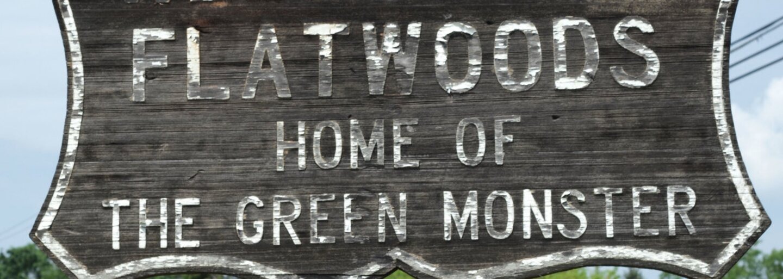Deti z mestečka Flatwoods prisahali, že v roku 1952 videli v lese mimozemšťana. Išlo však len o nafúknutý výmysel?