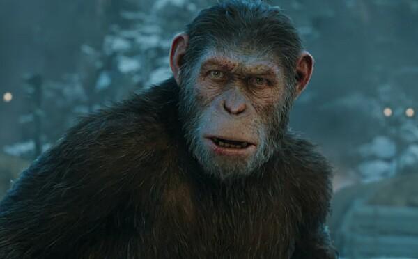 Disney natočí pokračování Planety opic. Nový režisér bude pokračovat v Caesarově příběhu
