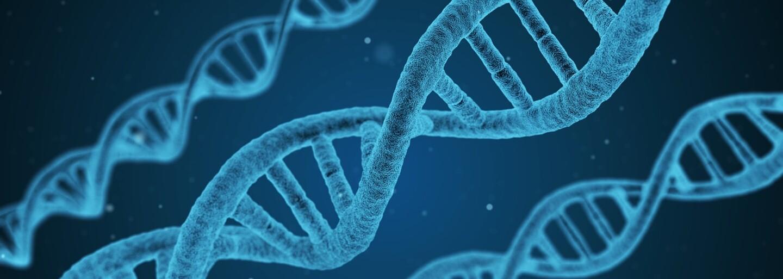 DNA afrického kmene se neshoduje se žádným známým lidským předkem. Vědci zkoumají původ genetiky duchů