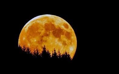 Dnes nás čeká největší Měsíc za posledních 68 let. Noční divadlo rozhodně stojí za zhlédnutí