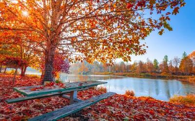 Dnes začíná podzim, den bude stejně dlouhý jako noc