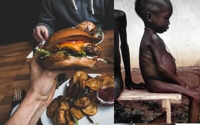 Do koša vyhodíme 1,6 miliárd ton potravín, zatiaľ čo 815 miliónov ľudí hladuje. Ako obmedziť plytvanie jedlom?