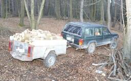 Do lesa si prišiel narúbať plnú vlečku dreva, prichytila ho polícia. Teraz mu hrozia tri roky za mrežami