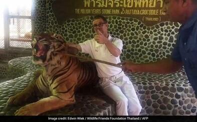 Do tigra pichajú palicou, aby zúrivo zapózoval turistom na fotkách. Otrasné zábery z thajskej zoologickej záhrady vyvolali vlnu pobúrenia