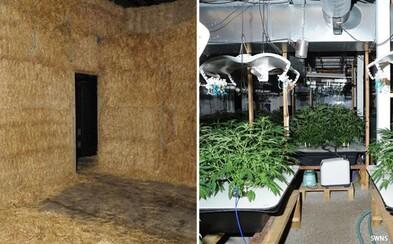 Důchodci ukrývali marihuanovou laboratoř s produktem za více než 27 milionů korun v kupce sena. Jeden z nich dokonce trpí rakovinou